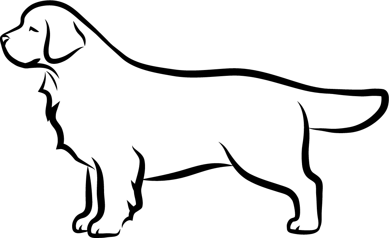 Clumber španěl